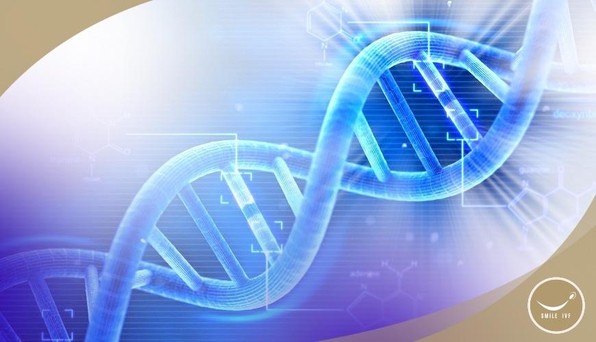 การตรวจคัดเลือกพันธุกรรมก่อนการฝังตัว (PGT)