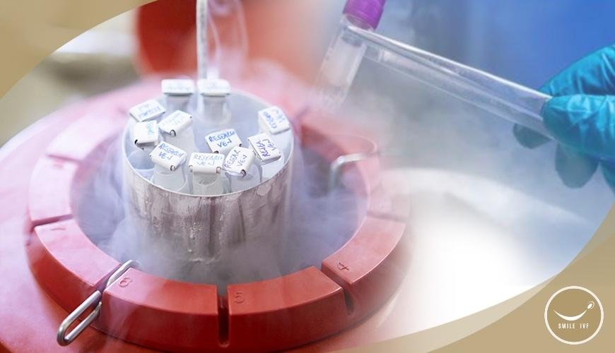 การแช่แข็งเก็บรักษาเซลล์ตัวอ่อนและเซลล์สืบพันธุ์ไข่และเชื้ออสุจิ